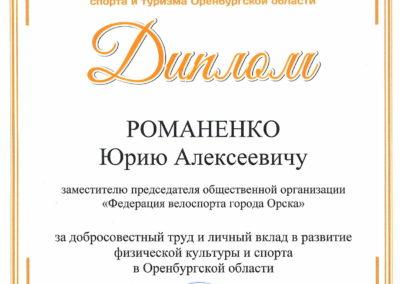 диплом минспорта 2019